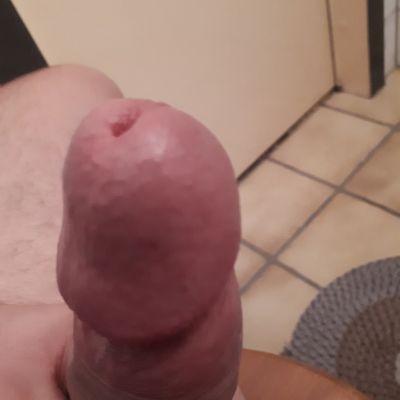 pilips1